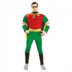 Kostým Robina