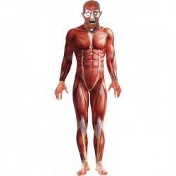Anatomy kostým
